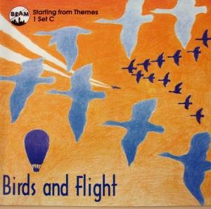 9781874099215: Birds and Flight: Starting Points for Work in Cross-curricular Mathematics