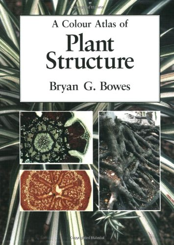 A Colour Atlas of Plant Structure