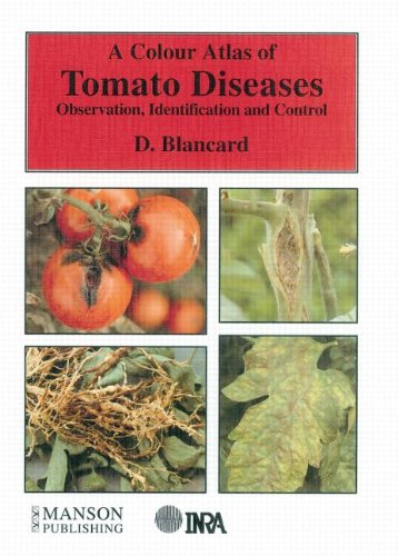 9781874545316: Colour Atlas of Tomato Diseases. Observation, Identification and Control