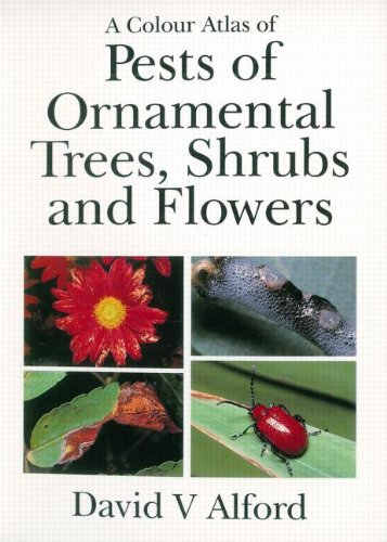 9781874545347: Pests of Ornamental Trees, Shrubs and Flowers (A Colour Atlas)