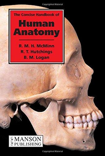 9781874545538: The Concise Handbook of Human Anatomy