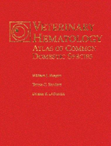 9781874545880: Veterinary Hematology: Atlas of Common Domestic Species
