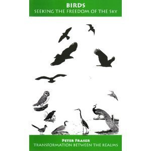 9781874581215: Birds : Seeking The Freedom of the Sky (Transformation Between the Realms)