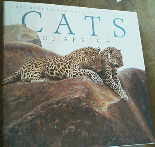 9781874950240: Cats of Africa