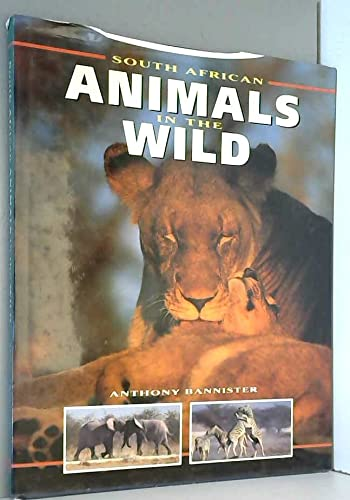 South African Animals in the Wild