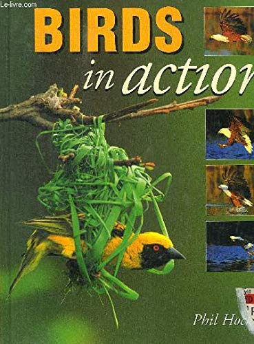 Birds in Action (1874951128) by PHIL HOCKEY