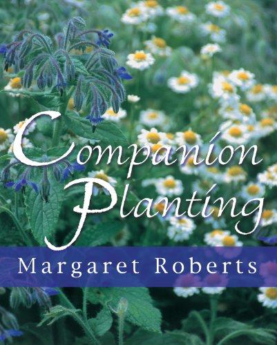 9781875093489: Companion planting