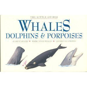 9781875137800: Whales, Dolphins, and Porpoises (Little Guides)