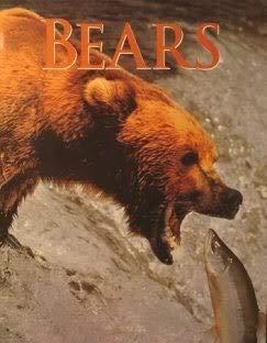 9781875137886: Bears