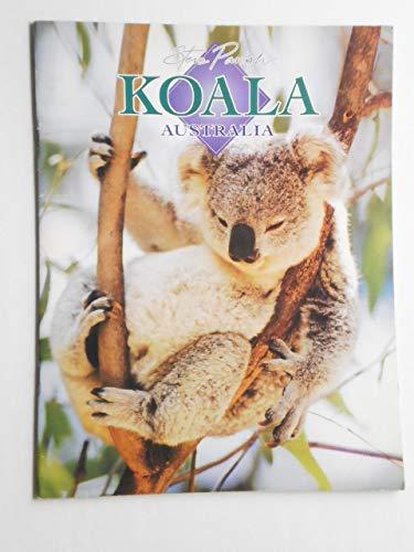 Koala Australia: Steve Parish