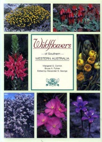 9781875971497: Wildflowers of Southern Western Australia