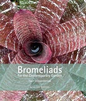 9781876314293: Bromeliads