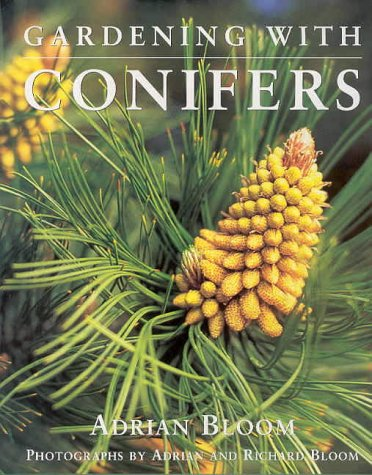 9781876473310: Gardening with Conifers