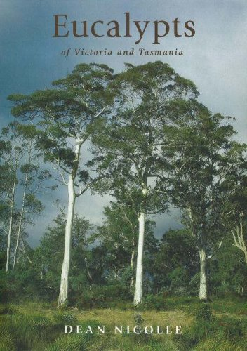 9781876473600: Eucalypts of Victoria and Tasmania