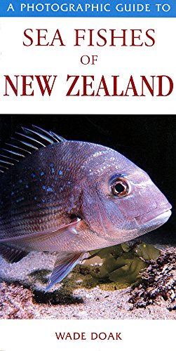9781877246951: A Photographic Guide to Sea Fishes of New Zealand
