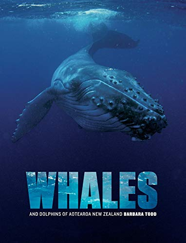 9781877385711: Whales and Dolphins of Aotearoa New Zealand