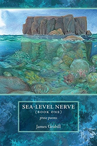 Sea-Level Nerve: Book One: Grabill, James