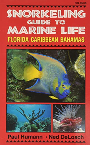 Snorkeling Guide to Marine Life Florida, Caribbean, Bahamas (9781878348104) by Paul Humann; Ned Deloach
