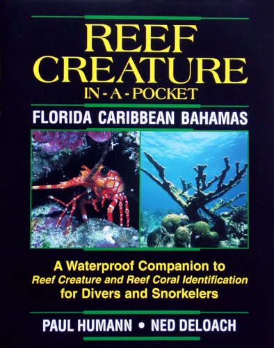 Reef Creature in-a-pocket Florida, Caribbean, Bahamas (1878348221) by Paul Humann; Ned DeLoach