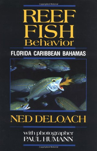 Reef Fish Behavior: Florida, Caribbean, Bahamas (9781878348289) by Ned DeLoach; Paul Humann