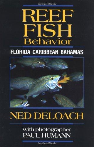 9781878348289: Reef Fish Behavior: Florida, Caribbean, Bahamas