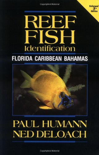 Reef Fish Identification: Florida Caribbean Bahamas Humann,: Humann, Paul and
