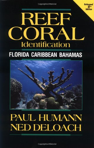 Reef Coral Identification Florida Caribbean Bahamas Including Marine Plants