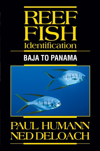 9781878348388: Reef Fish Identification: Baja to Panama
