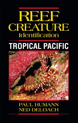 Reef Creature Identification Tropical Pacific: Paul Humann; Ned DeLoach