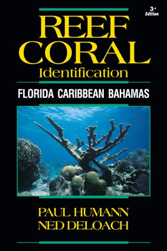 9781878348548: Reef Coral Identification: Florida Caribbean Bahamas, Including Marine Plants (Reef Set)