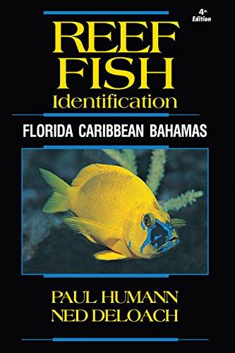 Reef Fish Identification - Florida Caribbean Bahamas - 4th Edition (Reef Set): Paul Humann, Ned ...