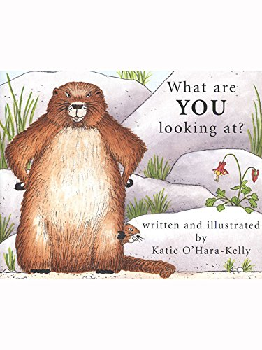 What Are You Looking At?: Katie O'Hara-Kelly