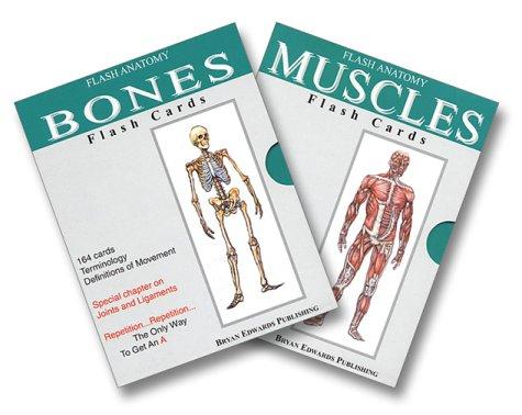 9781878576439: Muscle/Bone Combo (flash cards)