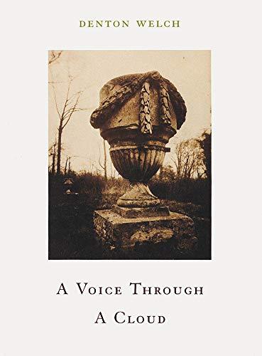 9781878972156: A Voice Through a Cloud