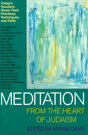 9781879045774: Meditation from the Heart of Judaism: Today's Teachers Share Their Practices, Techniques, and Faith