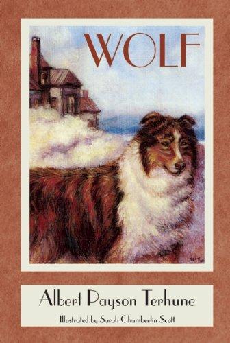 9781880158463: Wolf