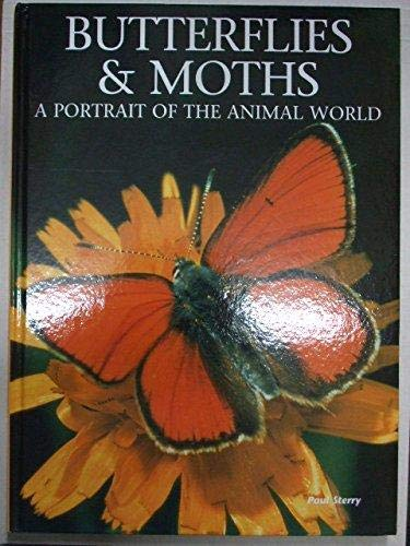 9781880908280: Butterflies and Moths: A Portrait of the Animal World