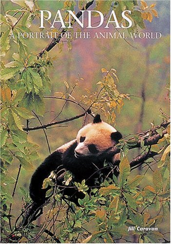 9781880908662: Pandas: A Portrait of the Animal World (Portraits of the Animal World)