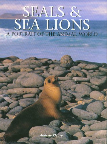 Seals and Sea Lions (A Portrait of: Andrew Cleave