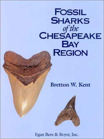 9781881620013: Fossil Sharks of the Chesapeake Bay Region