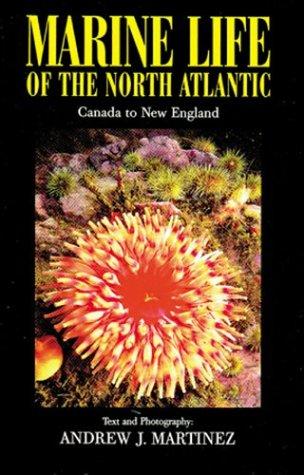 9781881652328: Marine Life of the North Atlantic: Canada to New England
