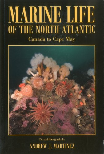 9781881652359: Marine Life of the North Atlantic: Canada to Cape May
