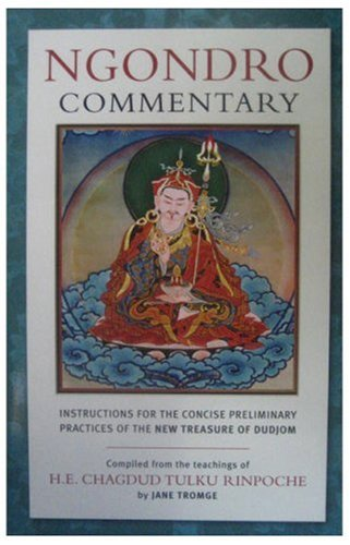 Ngondro Commentary: Instructions for the Concise Preliminary Practices of the New Treasure of Dudjom