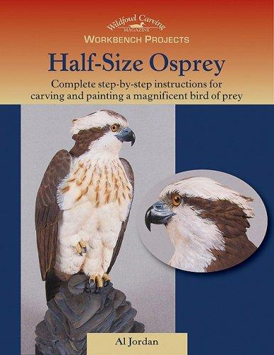 9781881982647: Workbench Projects: Half-Size Osprey