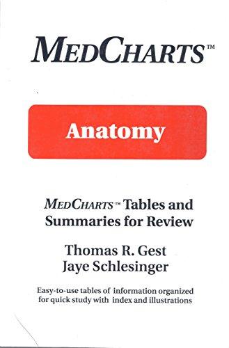9781882531011: Anatomy: Medcharts