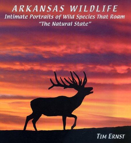 9781882906666: Arkansas Wildlife: Intimate Portraits of Wild Species That Roam