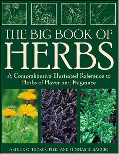 9781883010867: The Big Book of Herbs: A Comprehensive Illustrated Reference to Herbs of Flavor and Fragrance