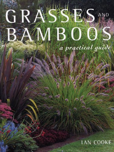 9781883052492: Grasses and Bamboos: A Practical Guide