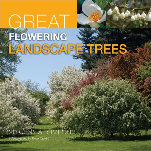 Great Flowering Landscape Trees: Simeone, Vincent A.