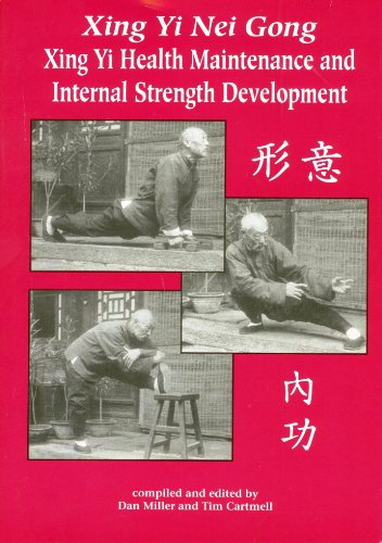9781883175047: Xing Yi Nei Gong: Xing Yi Health Maintenance and Internal Strength Development